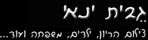 גבית ינאי